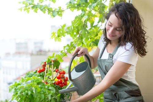 WEG - Gießen von Balkonblumen zur Unzeit - Unterlassungsanspruch