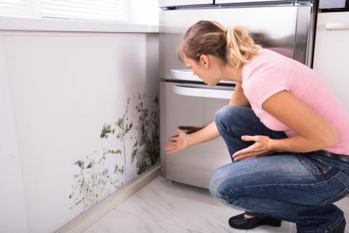 Schimmelpilzbefall auf Grund eines bauphysikalischen Mangels der Wohnung - Schadensersatz